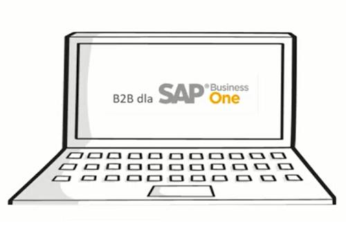 b2b mini 500x334 - Poznaj B2B dedykowane do SAP Business One!